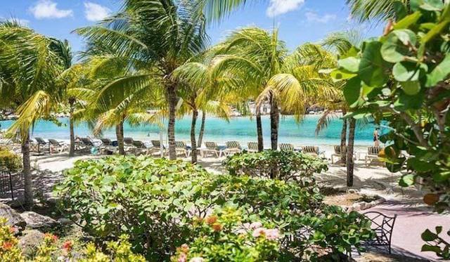 Tìm hiểu đảo Curacao - đối thủ của tuyển VN ở trận chung kết Kings Cup - Ảnh 3.