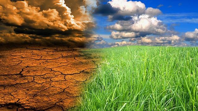 """""""Biến đổi khí hậu đang là thách thức cấp bách nhất hiện nay đối với nhân loại"""" - Ảnh 1."""
