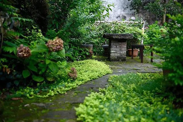 Cặp vợ chồng lập trình viên từ chối mua nhà ở thành phố, về quê xây nhà nhỏ bên khoảng sân vườn trồng rau và hoa mỗi ngày - Ảnh 4.