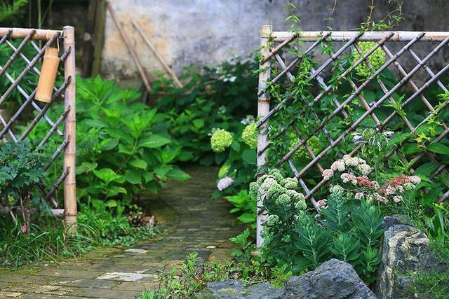 Cặp vợ chồng lập trình viên từ chối mua nhà ở thành phố, về quê xây nhà nhỏ bên khoảng sân vườn trồng rau và hoa mỗi ngày - Ảnh 7.