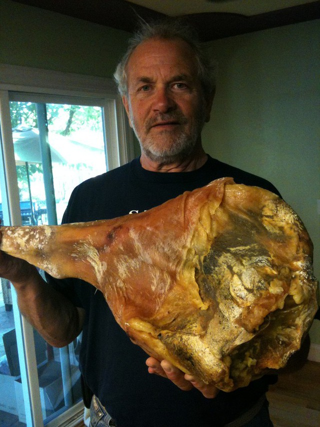 Treo đùi lợn trên núi hơn 1 năm cho mốc meo rồi gọi nó là báu vật ẩm thực, chắc cũng chỉ có người Tây Ban Nha - Ảnh 2.