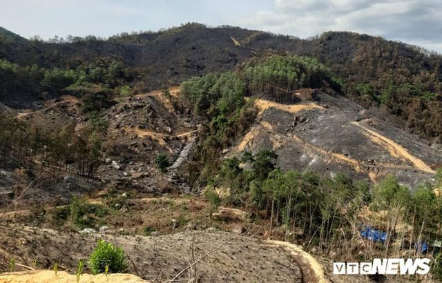 Ảnh: Xót xa rừng Quảng Nam chìm trong biển lửa suốt 22 tiếng, 107 ha keo bị thiêu rụi - Ảnh 4.