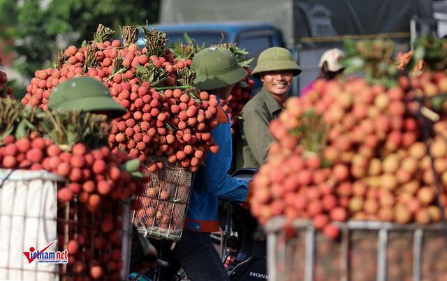 Trung Quốc thay đổi, Donald Trump khó lường, Việt Nam trong vòng xoáy - Ảnh 1.