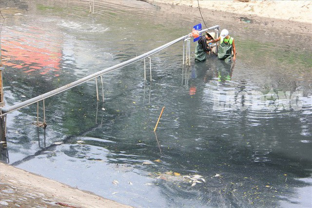 Nước sông Tô Lịch đen trở lại, xuất hiện cá chết trắng nổi lềnh bềnh - Ảnh 10.