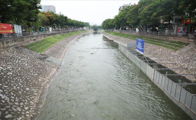 Hành trình phủ xanh cỏ lá tre trên kè sông Tô Lịch - Ảnh 12.
