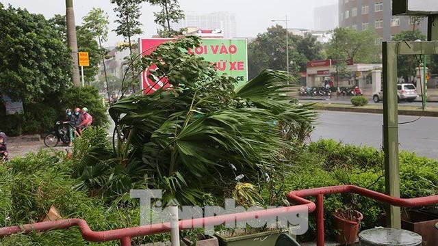 Hà Nội nổi mưa dông sau ngày đầu tuần nắng như đổ lửa - Ảnh 3.