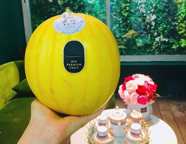 Đại gia Hà Thành chi bạc triệu giải nhiệt bằng dưa hấu Nhật Bản vỏ vàng, không hạt - Ảnh 1.