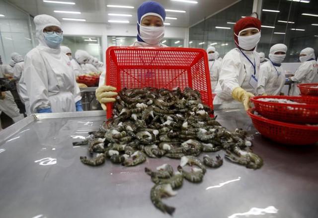 Doanh nghiệp Việt phải đánh đổi những năm đầu để hưởng lợi từ EVFTA - Ảnh 2.