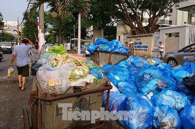Thảm hoạ môi trường từ túi nilon, rác thải nhựa - Ảnh 12.