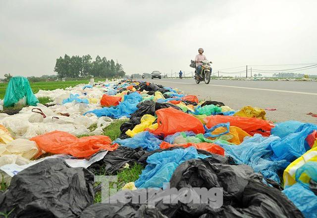 Thảm hoạ môi trường từ túi nilon, rác thải nhựa - Ảnh 13.