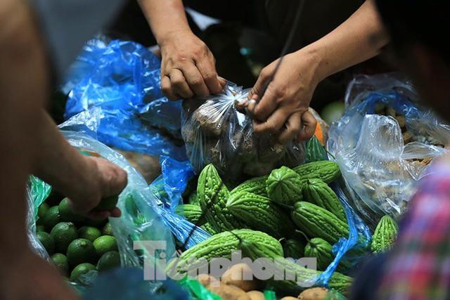 Thảm hoạ môi trường từ túi nilon, rác thải nhựa - Ảnh 4.