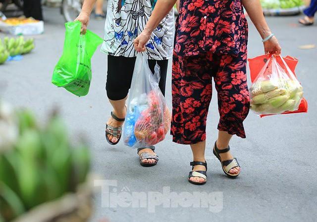 Thảm hoạ môi trường từ túi nilon, rác thải nhựa - Ảnh 6.