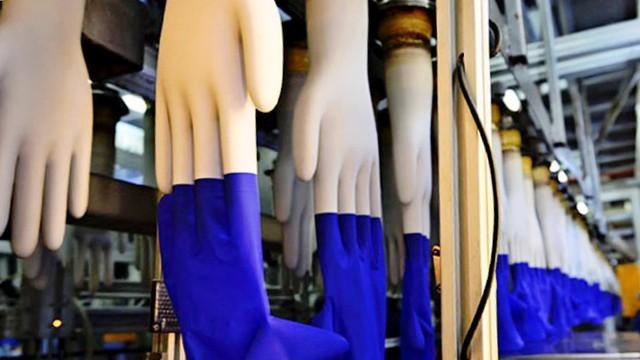 Hãng găng tay lớn nhất thế giới sắp mở nhà máy tại Việt Nam - Ảnh 2.