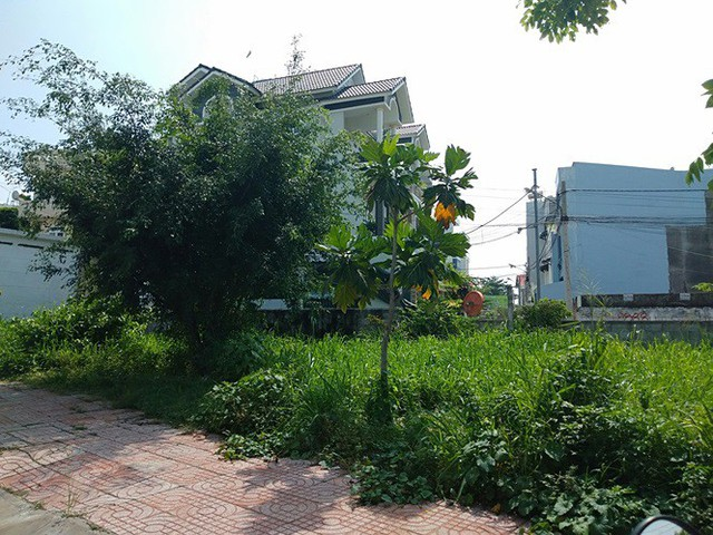 Thu hồi dự án khu nhà ở Phước Long B do ông Lê Tấn Hùng chuyển nhượng sai - Ảnh 8.
