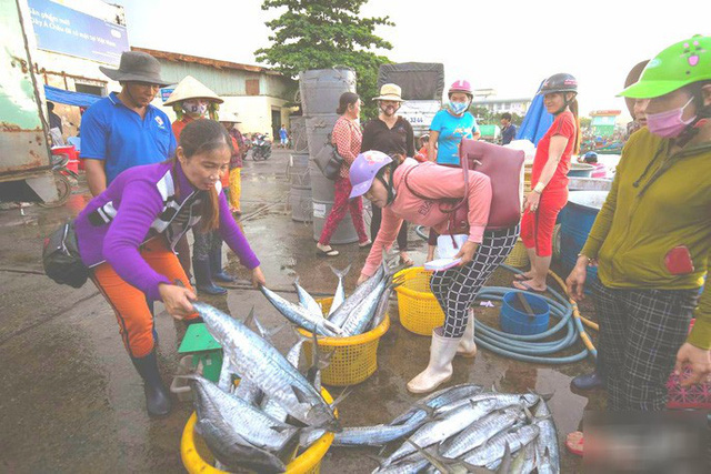 Mãn nhãn tại cảng cá lâu đời ở đảo ngọc Phú Quốc - Ảnh 9.