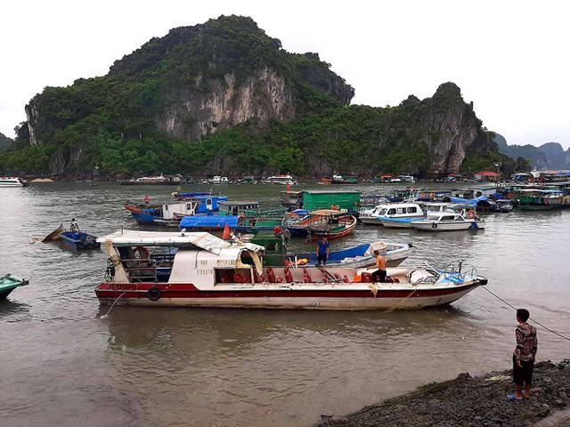Tàu cao tốc chở 46 du khách bị tàu cá đâm ở Vân Đồn - Ảnh 2.