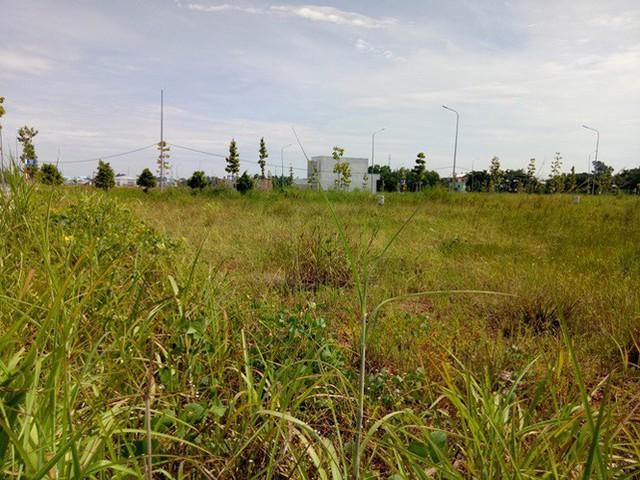 Vụ 'xẻ 7.000 m2 đất công phân lô bán nền: Ngưng mọi hoạt động giao dịch - Ảnh 5.