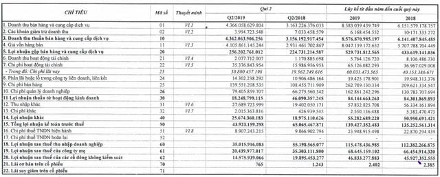 Savico (SVC): Lợi nhuận quý 2 sụt giảm mạnh 42%, nhiều đơn vị ô tô chịu lỗ do trích lập dự phòng - Ảnh 1.