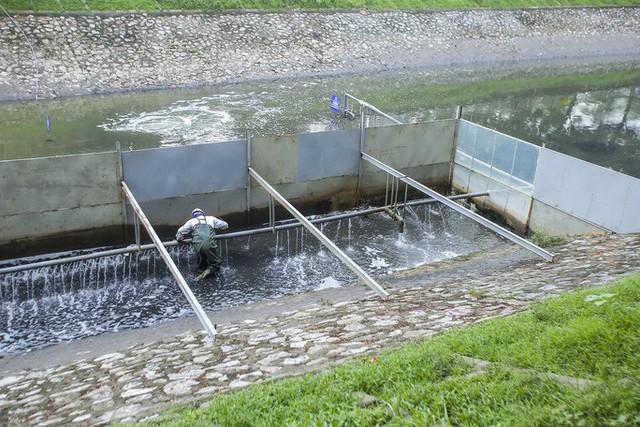 Chuyên gia Nhật Bản đưa ra 6 tiêu chí hồi sinh sông Tô Lịch - Ảnh 2.