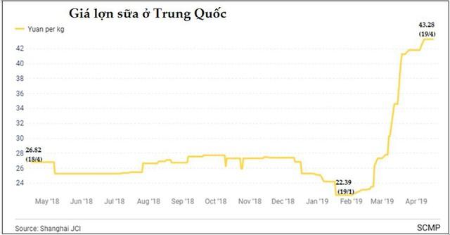 Giá thịt lợn tại Trung Quốc có thể tăng tới 40 - 70% trong 6 tháng cuối năm - Ảnh 1.
