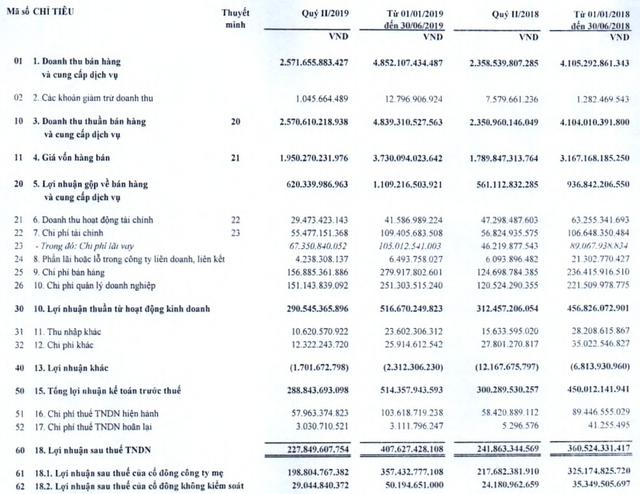 Viglacera (VGC): Lãi ròng quý 2 giảm về 199 tỷ đồng - Ảnh 1.