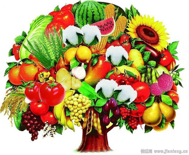 6 nguyên tắc vàng trong ăn uống để luôn khỏe mạnh đẩy lùi bệnh tật  - Ảnh 3.