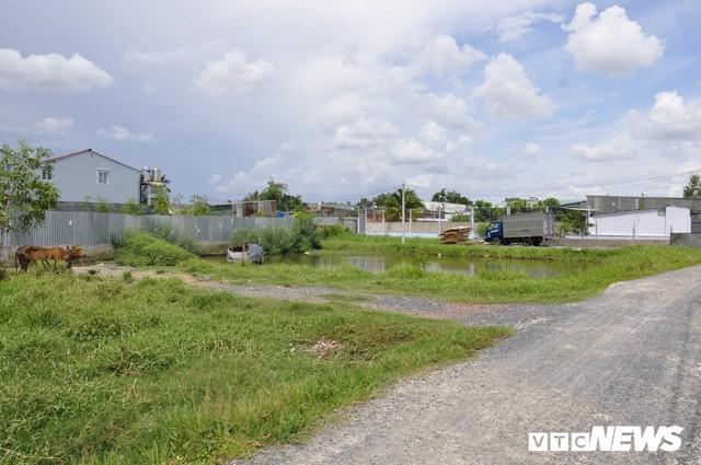 Ảnh: Hàng trăm công trình trái phép mọc trên đất nông nghiệp ở ngoại ô TP.HCM - Ảnh 3.
