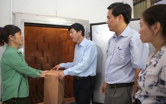 Vì sao hơn 1.000 tấn cá khô xuất khẩu ở Quảng Trị bị ùn ứ? - Ảnh 1.