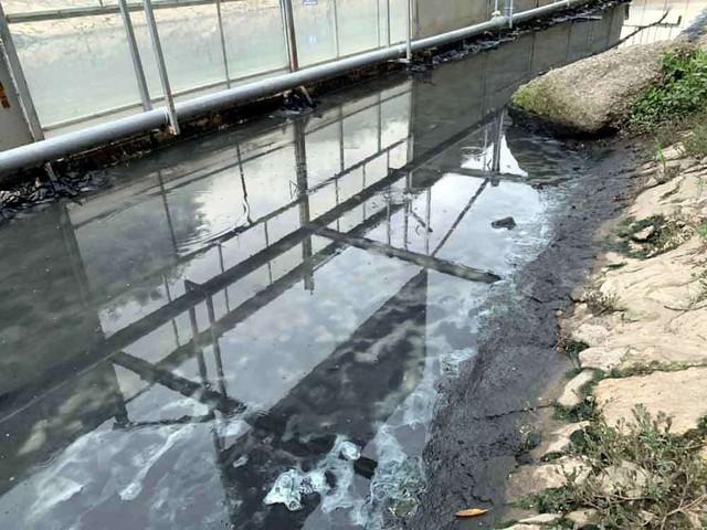 Sông Tô Lịch nước trong, nhìn rõ đáy bùn đang phân hủy nhờ công nghệ Nhật - Ảnh 2.