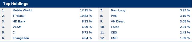 """Cổ phiếu MWG, VEA tăng """"phi mã"""", Pyn Elite Fund chiến thắng thị trường trong tháng 6 - Ảnh 2."""