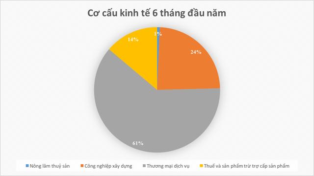 Soi các chỉ số kinh tế đáng chú ý của TP. Hồ Chí Minh trong nửa đầu năm 2019 - Ảnh 3.