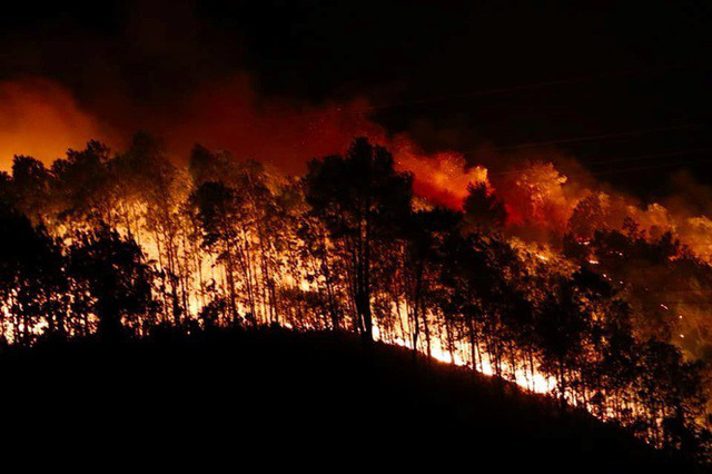 Cận cảnh rừng Hà Tĩnh cháy đỏ trời, dân tất tả di dời tài sản  - Ảnh 1.