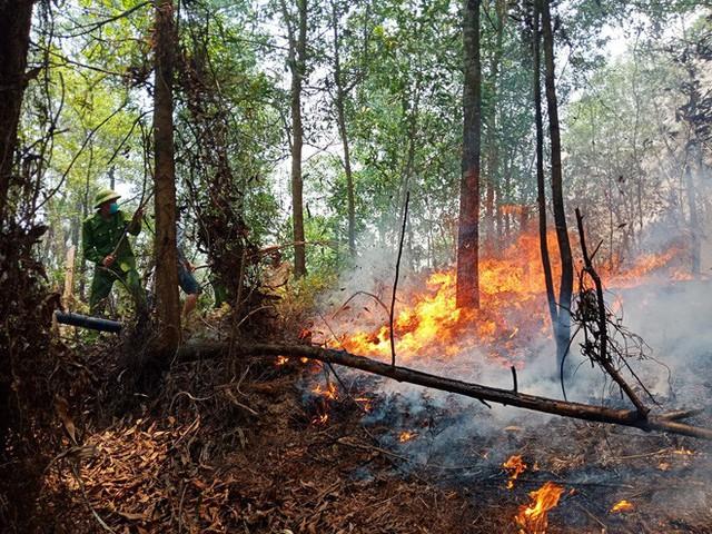 Toàn cảnh vụ cháy rừng thông ở Hà Tĩnh, lực lượng chức năng trắng đêm canh rừng - Ảnh 1.