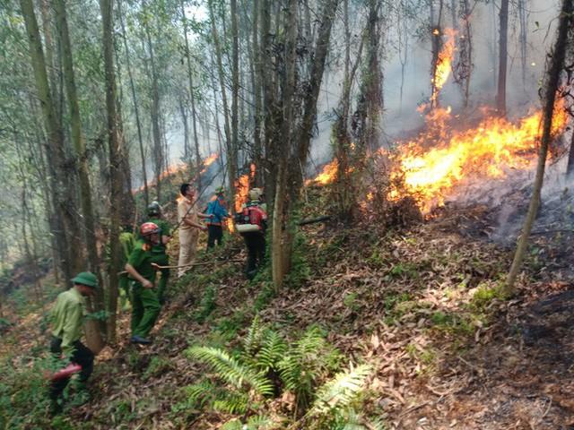 Toàn cảnh vụ cháy rừng thông ở Hà Tĩnh, lực lượng chức năng trắng đêm canh rừng - Ảnh 2.
