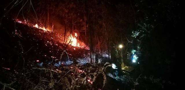 Toàn cảnh vụ cháy rừng thông ở Hà Tĩnh, lực lượng chức năng trắng đêm canh rừng - Ảnh 11.