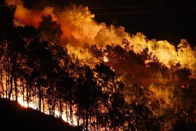 Toàn cảnh vụ cháy rừng thông ở Hà Tĩnh, lực lượng chức năng trắng đêm canh rừng - Ảnh 16.
