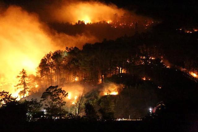 Cận cảnh rừng Hà Tĩnh cháy đỏ trời, dân tất tả di dời tài sản  - Ảnh 3.