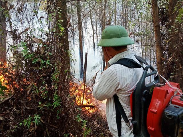 Toàn cảnh vụ cháy rừng thông ở Hà Tĩnh, lực lượng chức năng trắng đêm canh rừng - Ảnh 3.