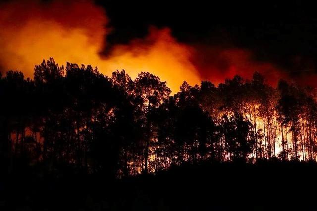 Cận cảnh rừng Hà Tĩnh cháy đỏ trời, dân tất tả di dời tài sản  - Ảnh 4.