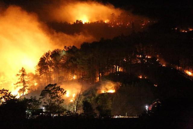 Toàn cảnh vụ cháy rừng thông ở Hà Tĩnh, lực lượng chức năng trắng đêm canh rừng - Ảnh 4.