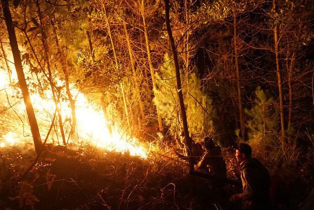 Toàn cảnh vụ cháy rừng thông ở Hà Tĩnh, lực lượng chức năng trắng đêm canh rừng - Ảnh 7.