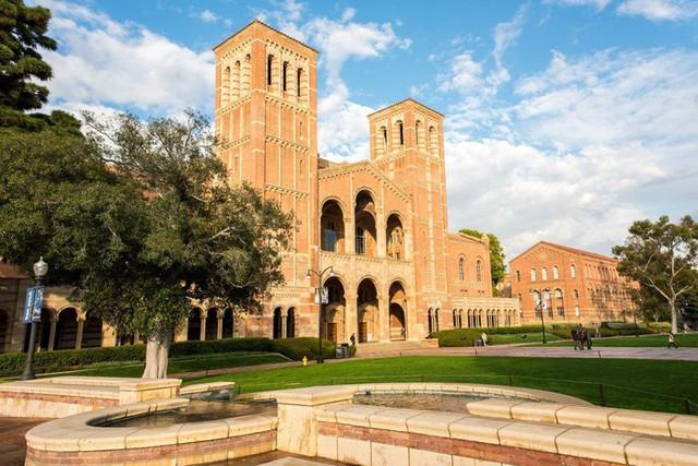 20 trường đại học sản sinh nhiều người siêu giàu nhất thế giới - Ảnh 1.