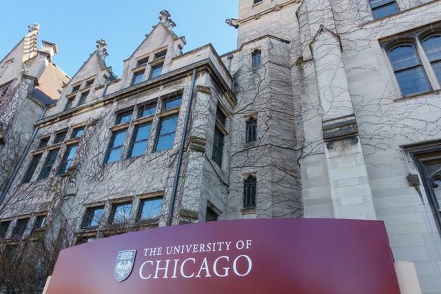 20 trường đại học sản sinh nhiều người siêu giàu nhất thế giới - Ảnh 11.