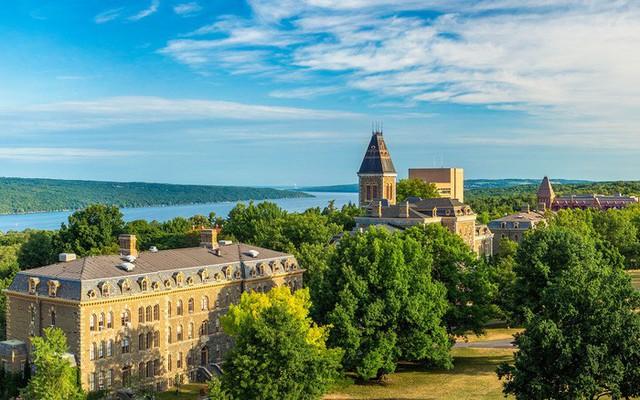 20 trường đại học sản sinh nhiều người siêu giàu nhất thế giới - Ảnh 7.