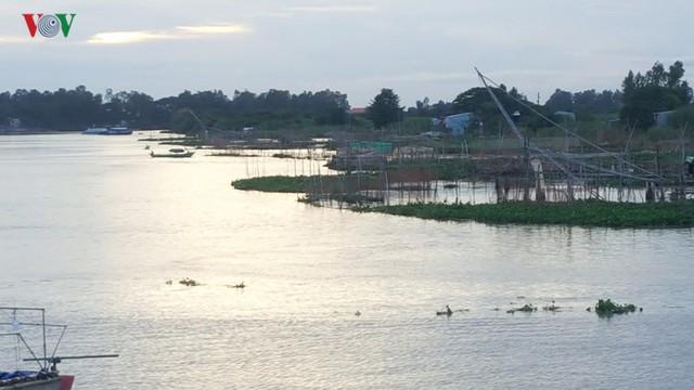 Mùa nước nổi về trễ, người dân An Giang mất nguồn thu - Ảnh 1.