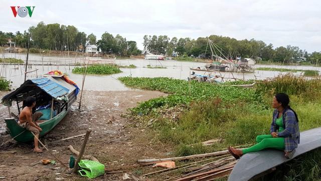 Mùa nước nổi về trễ, người dân An Giang mất nguồn thu - Ảnh 4.