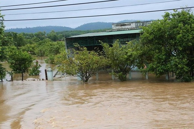 Sau Đắk Kar, Thủy điện Đắk Sin 1 gặp sự cố, đang bị cô lập - Ảnh 2.