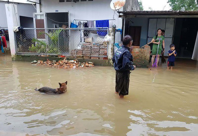 Cuộc sống người dân Phú Quốc bị đảo lộn trong trận lụt lịch sử - Ảnh 6.