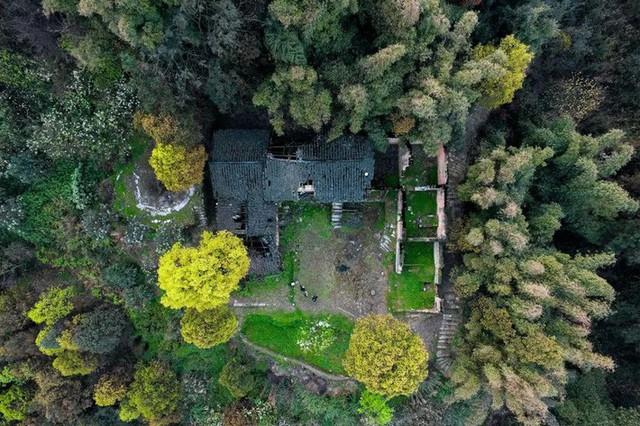 Nữ biên tập viên từ bỏ công việc và ngôi nhà trong thành phố, cùng chồng và bố mẹ sống cuộc đời an nhàn trong ngôi nhà vườn ở ngoại ô - Ảnh 20.