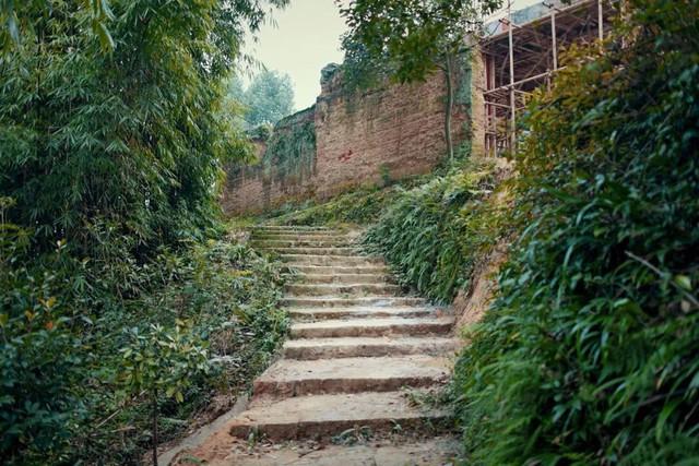 Nữ biên tập viên từ bỏ công việc và ngôi nhà trong thành phố, cùng chồng và bố mẹ sống cuộc đời an nhàn trong ngôi nhà vườn ở ngoại ô - Ảnh 5.